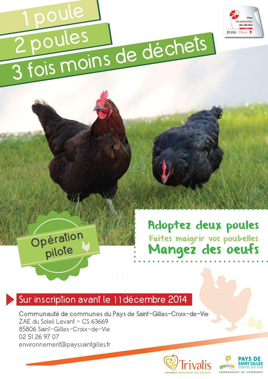 2014-11-operation-poules